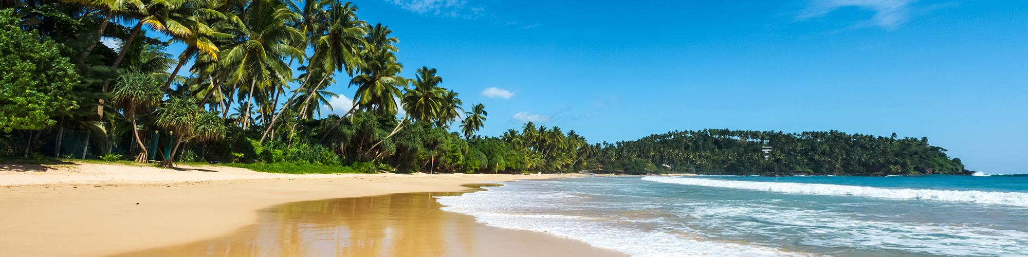 Hauptattraktionen der Ostküste Sri Lankas
