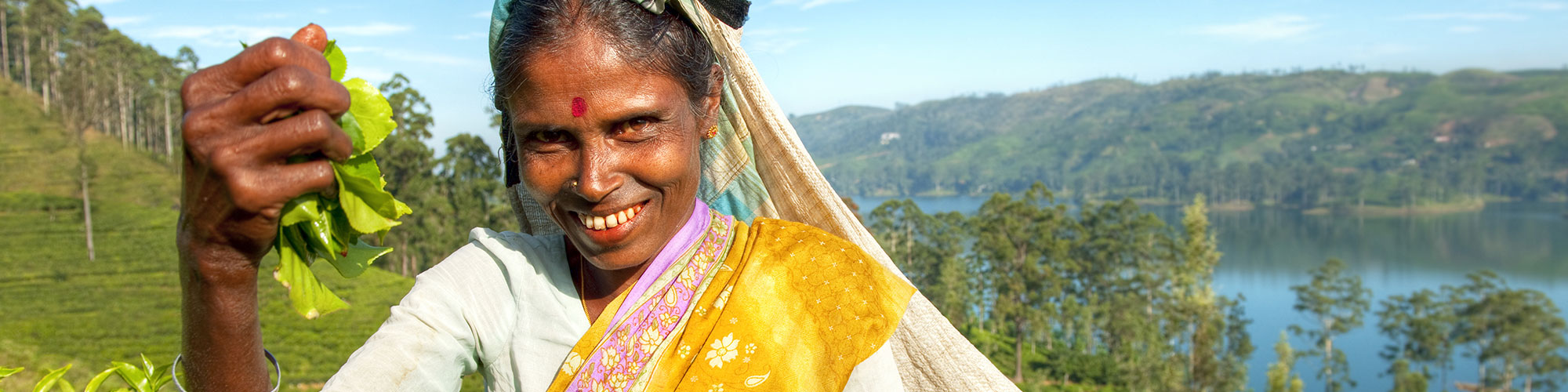 Sri Lanka Teeplantagen & Berge: Die Hauptattraktionen