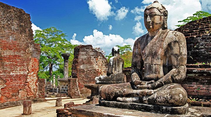 Polonnaruwa  Minneriya Safari