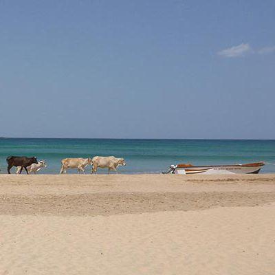 Beach, Batticaloa, Sri Lanka