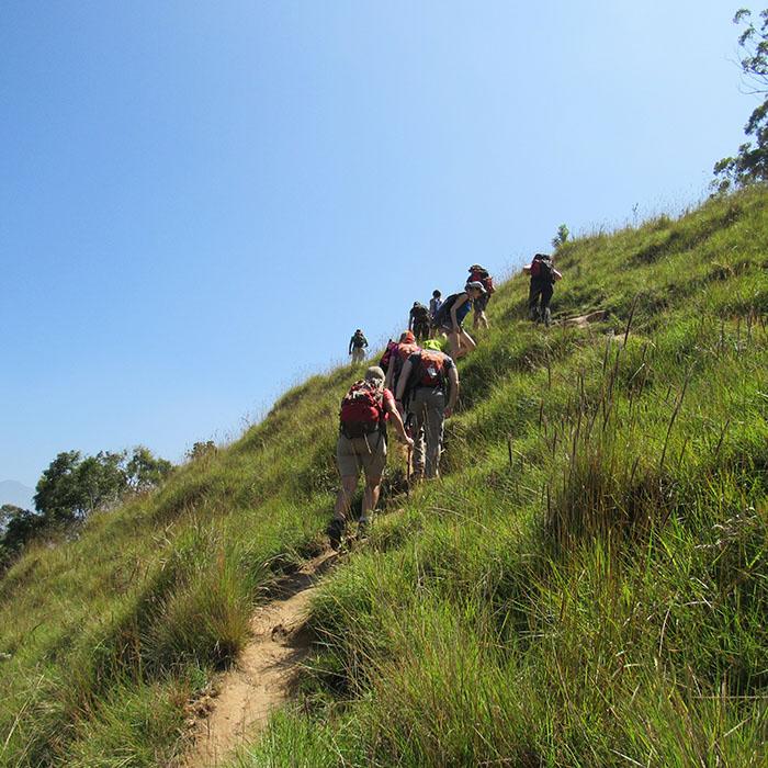 Sri Lanka, Ella, Felsen, Umgebung