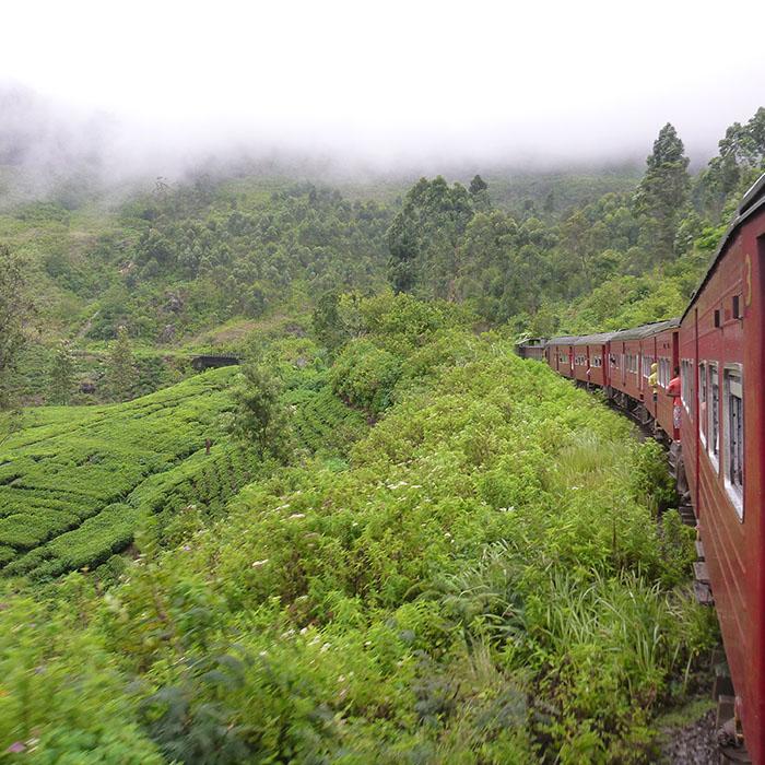 Zug, Kandy, Sri Lanka