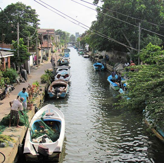 Lagune, Boot, Safari, Negombo, Sri Lanka