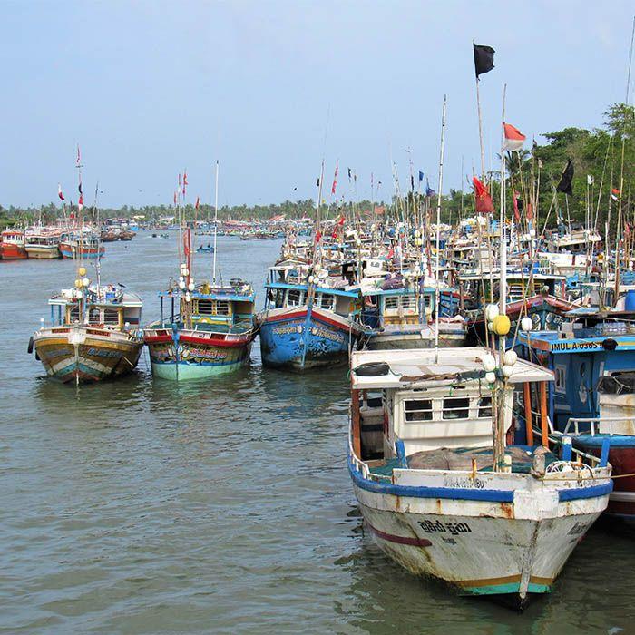 Boote, Negombo, Sri Lanka