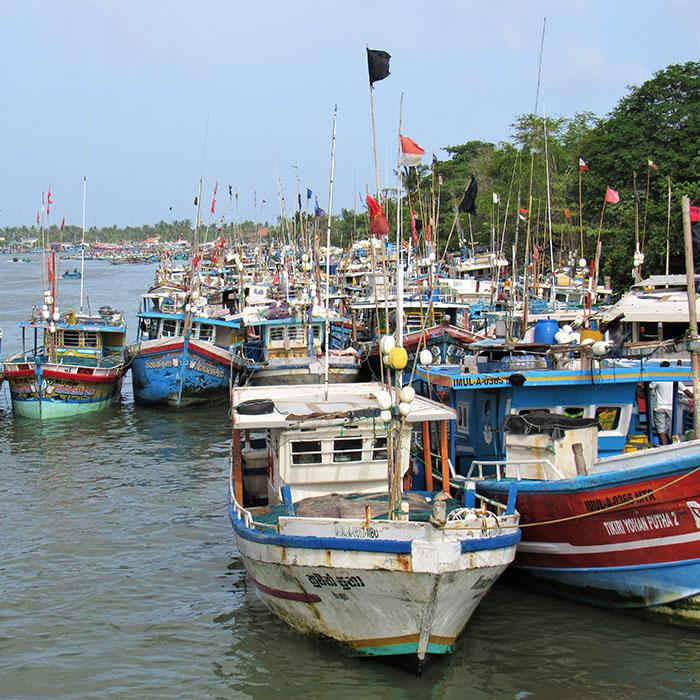 Hafen, Negombo, Sri Lanka