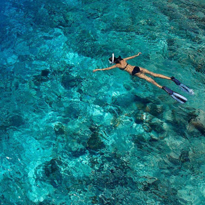 Snorkeling, Polhena, Sri Lanka