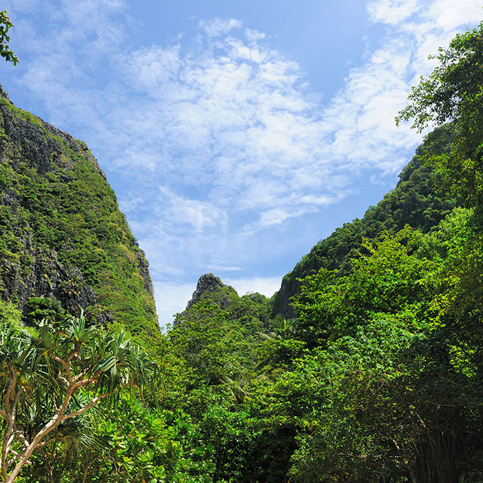 Wanderung, Koh Chang, Thailand