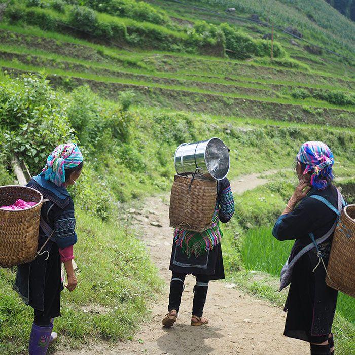 Wanderung, Quảng Hạ, Chiến Thắng, Vietnam