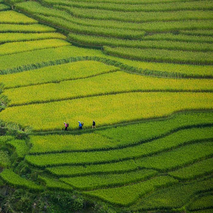 Wanderung, Nậm Ánh, Nà Chì, Vietnam