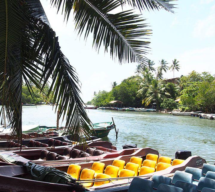 Sri Lanka, Bootsafari, Brief Garten