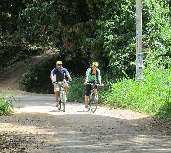 Sri Lanka, Fahrrad, Tour, Teeplantagen