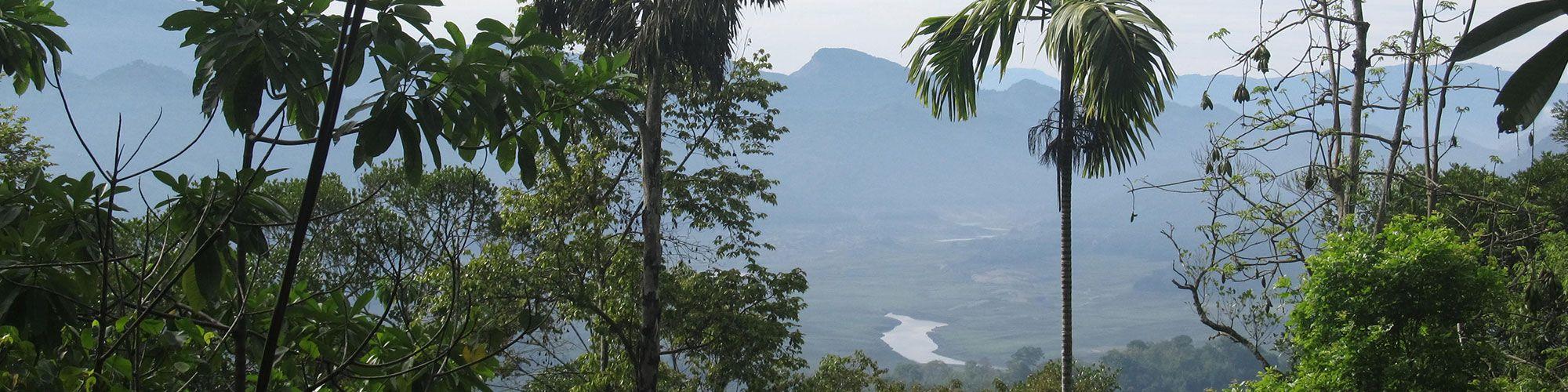 Sri Lanka, Hochland, HillCountry