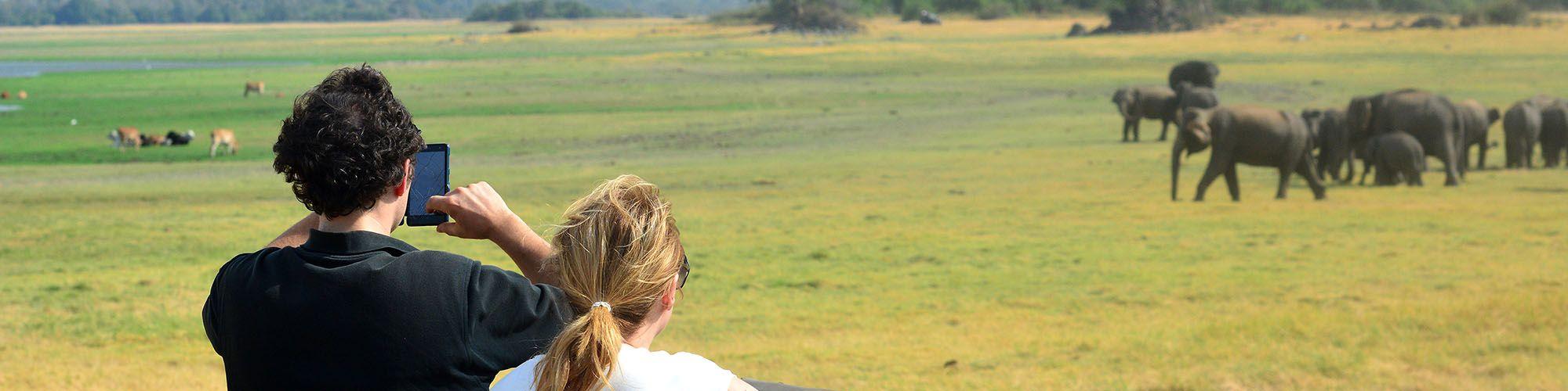 Sri Lanka, Jeep Safari, Minneriya, Nationalpark
