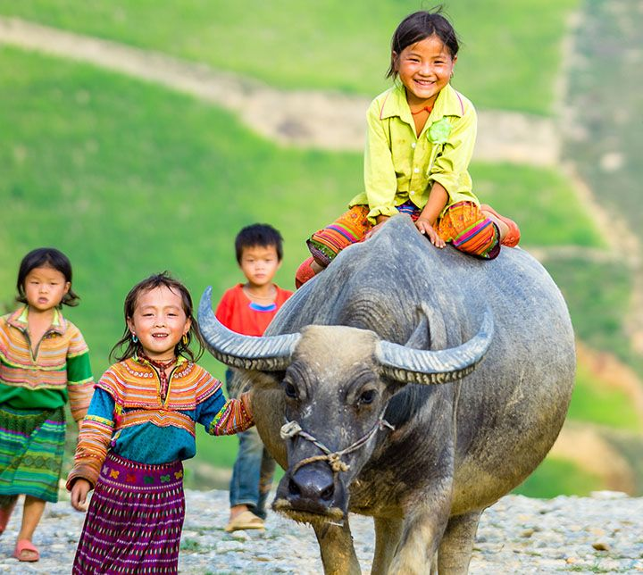 Vietnam, Sapa, Minorities, Mensch